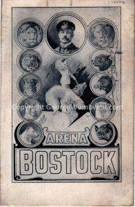 BostockArenaPolarbear1907front_small