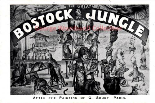 Bostock Jungle from Painting by G Soury Paris