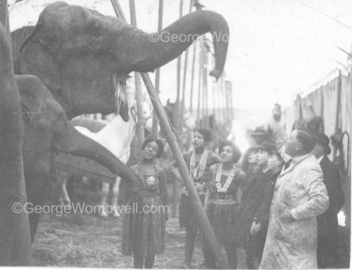 Luton1931feeding elephant at SangersCircus